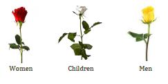 dv roses